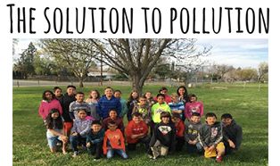 Solution to Pollution